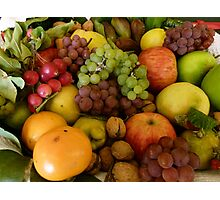 Tasmanian Harvest Selection Photographic Print