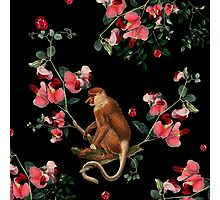 Monkey World: Nosy Photographic Print