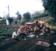 Seasonal strawberry pickers taking a break by lols