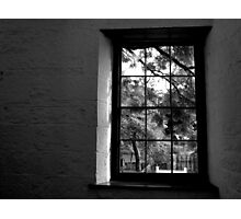 Looking Out Photographic Print