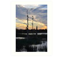 Nighttime in the Wetlands Art Print