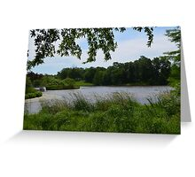 Windy Day at Powell Gardens  Greeting Card