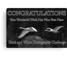 b&w challenge winner Canvas Print