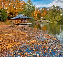 Leafy Path to Serenity by Joe Jennelle