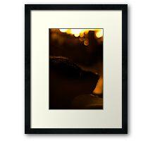 Fireside Lab Framed Print