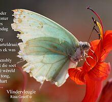 Vlindervleugie by Rina Greeff