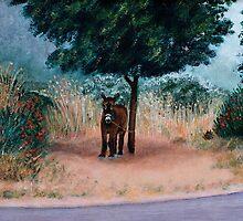 """The Corsican Donkey"" by Gabriella Nilsson"