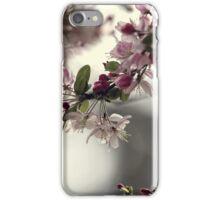 Spring moods iPhone Case/Skin