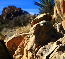 Red Rock Canyon by DHParsons