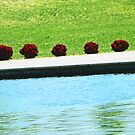 All in a Row 2 by Lenore Senior