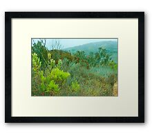 Brush and Plants on a Rainy Day Framed Print