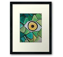 Insect eye Framed Print