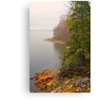 Coastline in Fog, Blue Hill Peninsula, Maine Canvas Print