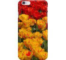 Mass of spring colour - Tulips in London iPhone Case/Skin