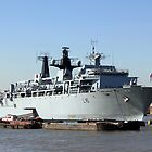 Warship HMS Bulwark by Jasna