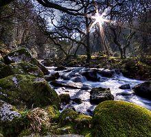 Enchanting Stream by Maria Selley