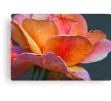 Eroded Rose Canvas Print
