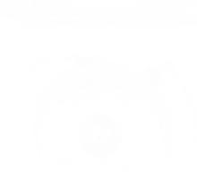 Holga 135 White Sticker