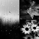 AFTER THE RAIN (TRIPTYCH) by Redtempa