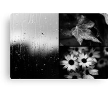 AFTER THE RAIN (TRIPTYCH) Canvas Print