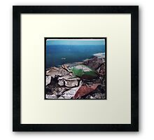 The beast Framed Print