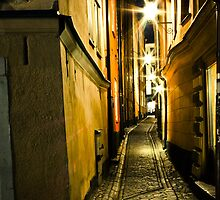 Down the narrow lanes by ankitsinghal