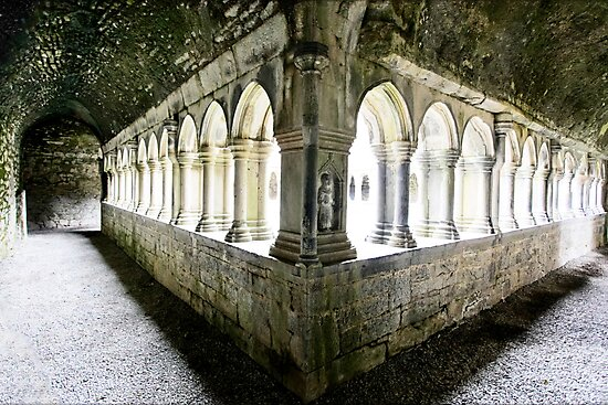 The Cloister - Askeaton Friary by Polly x