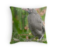 baby Common Grackle Throw Pillow