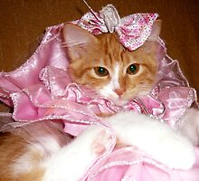 Pretty Princess Kitten by MoMoCards
