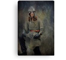 Silver Knight Canvas Print