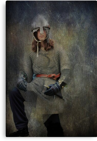Silver Knight by Wendi Donaldson Laird