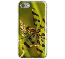 Brown Spotted Yellow-wing Dragonfly iPhone Case/Skin