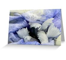 Wintry Skies Greeting Card