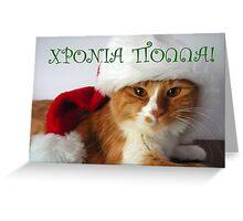 Greek Greeting - Christmas Cat Wearing Santa Hat Greeting Card