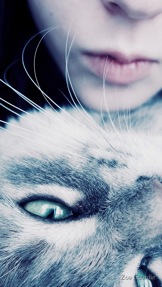 Meow by schizomania