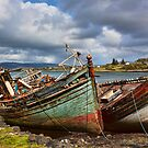 Shipwrecked by Lynne Morris
