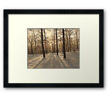 GOLDEN WINTER MORN 2 Framed Print
