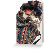 Cute Kitten in Backpack Greeting Card