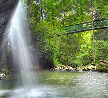 Refreshing Waterfall by Shannon Rogers