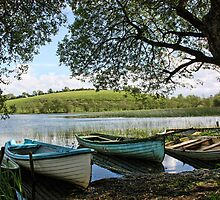 Boats at Rest by Julesrules