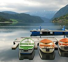 Rowboats in Ulvik - Norway by Arie Koene