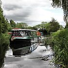 POCKLINGTON CANAL TRIP by martinhenry
