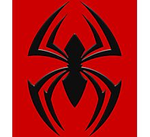 Kaine's Spider Photographic Print