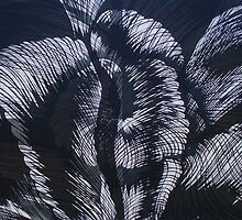 Transition in black & grey by Bert  Aperloo