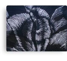 Transition in black & grey Canvas Print