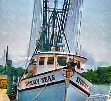 Stormy Seas by suzannem73
