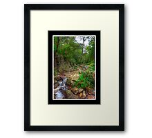 On the way to Simpson's Falls Framed Print