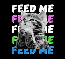 Feed me kitten very hungry asking for food by CarlosV