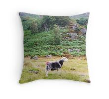 Duddon Valley Red Throw Pillow