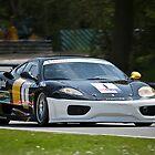 No. 1 Ferrari by andyw